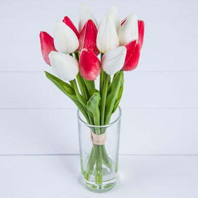 Spring Tulips in Glass Vase