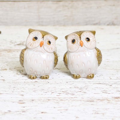 Stoneware Owl Salt and Pepper Set