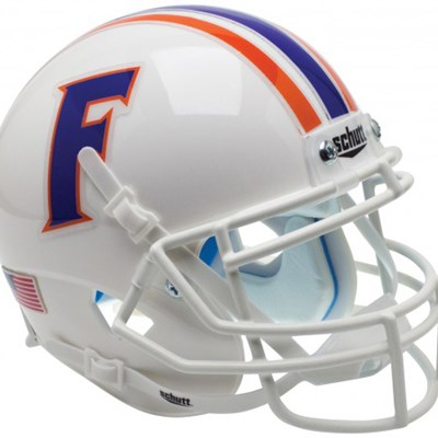 Florida - Mini Helmet