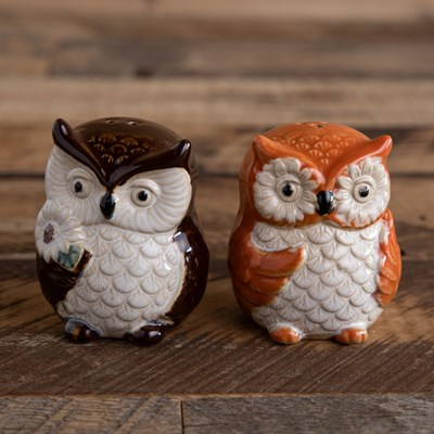Owl Salt and Pepper Shaker Set