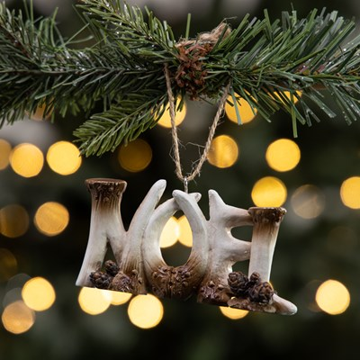 "Antler Word Sign Ornament - ""Noel"""