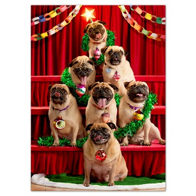 Seven Pugs Pose as Tree Cards - Set of 6
