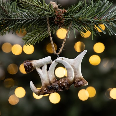 "Antler Word Sign Ornament - ""Joy"""