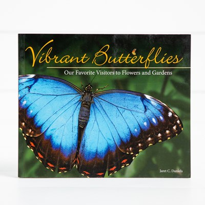 Vibrant Butterflies Book