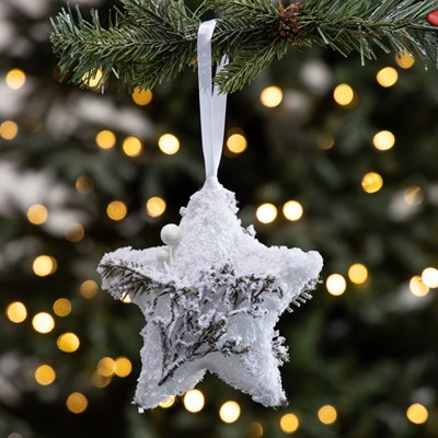 Light-Up Snowy Star Ornament