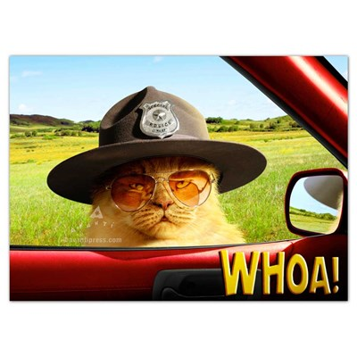 Trooper Cat Greeting Card