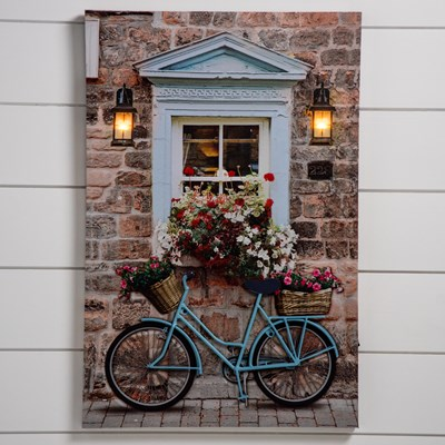 Light-Up 3D Bicycle Canvas