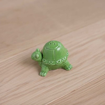 Turtle Salt and Pepper Shaker Set