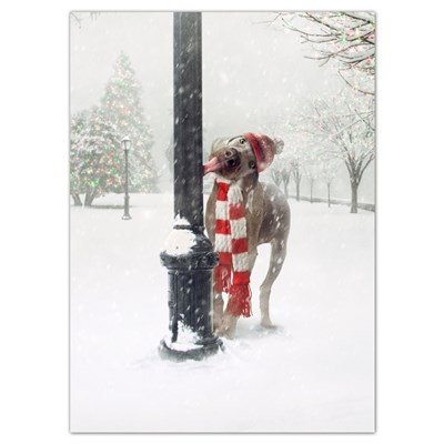 Dog with Tongue Stuck to Pole Cards - Set of 6