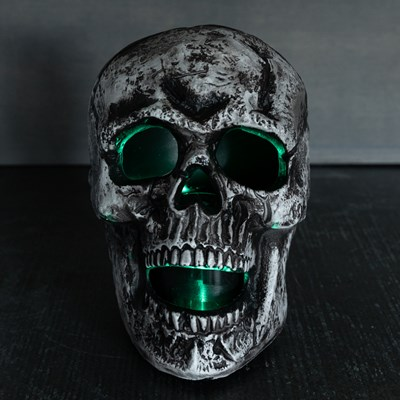 Animated Misting Skull Decor