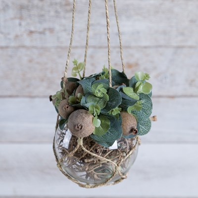 Faux Plant in Hanging Glass Orb