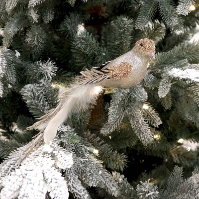 Glitter Bird with White Feathers Ornament
