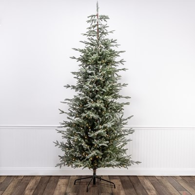 9' Pre-Lit Iced Spruce Christmas Tree