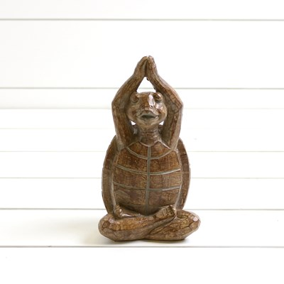 Yoga Turtle with Arms Over Head