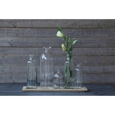 Set of 6 Glass Bottle Vases with Wood Tray