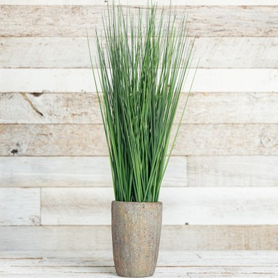 Faux Grass In Cement Planter