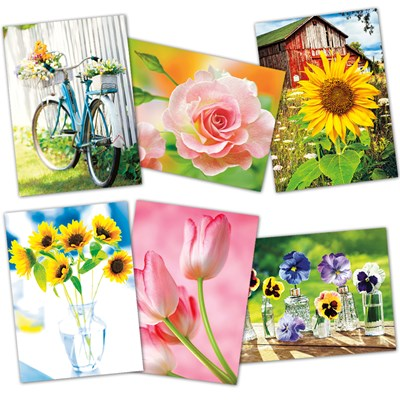 Assorted In Bloom Cards - Set of 6