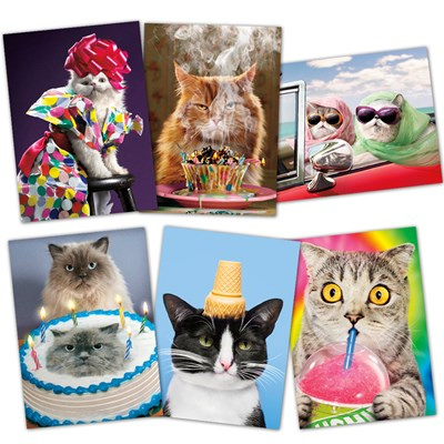 Assorted Quirky Kittens Birthday Cards - Set of 6