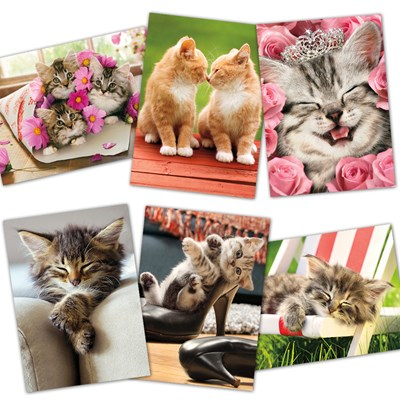 Assorted Hugs and Kittens Cards - Set of 6