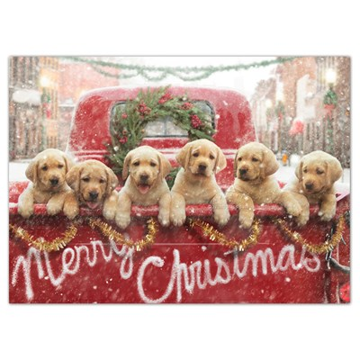 Lab Puppies in Back of Pickup Cards - Set of 6