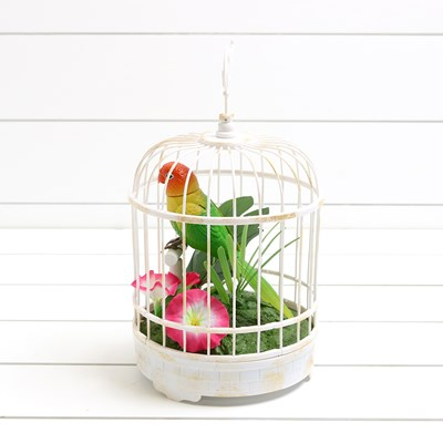 Animated Bird in Cage