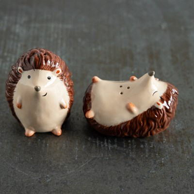 Hedgehog Salt and Pepper Set