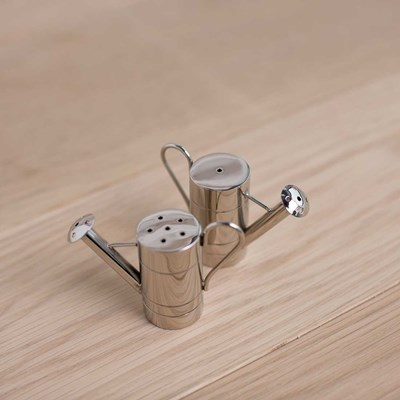 Metal Watering Can Salt and Pepper Shaker Set