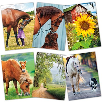 Assorted Country Blank Cards - Set of 6