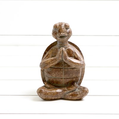 Yoga Turtle with Hands Together