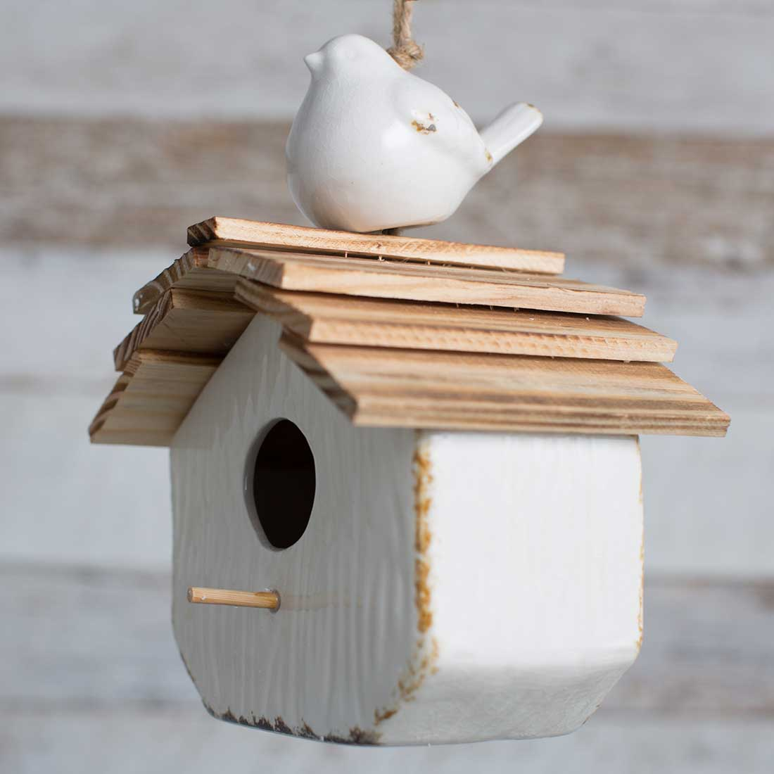 Shop Birdhouses & Feeders