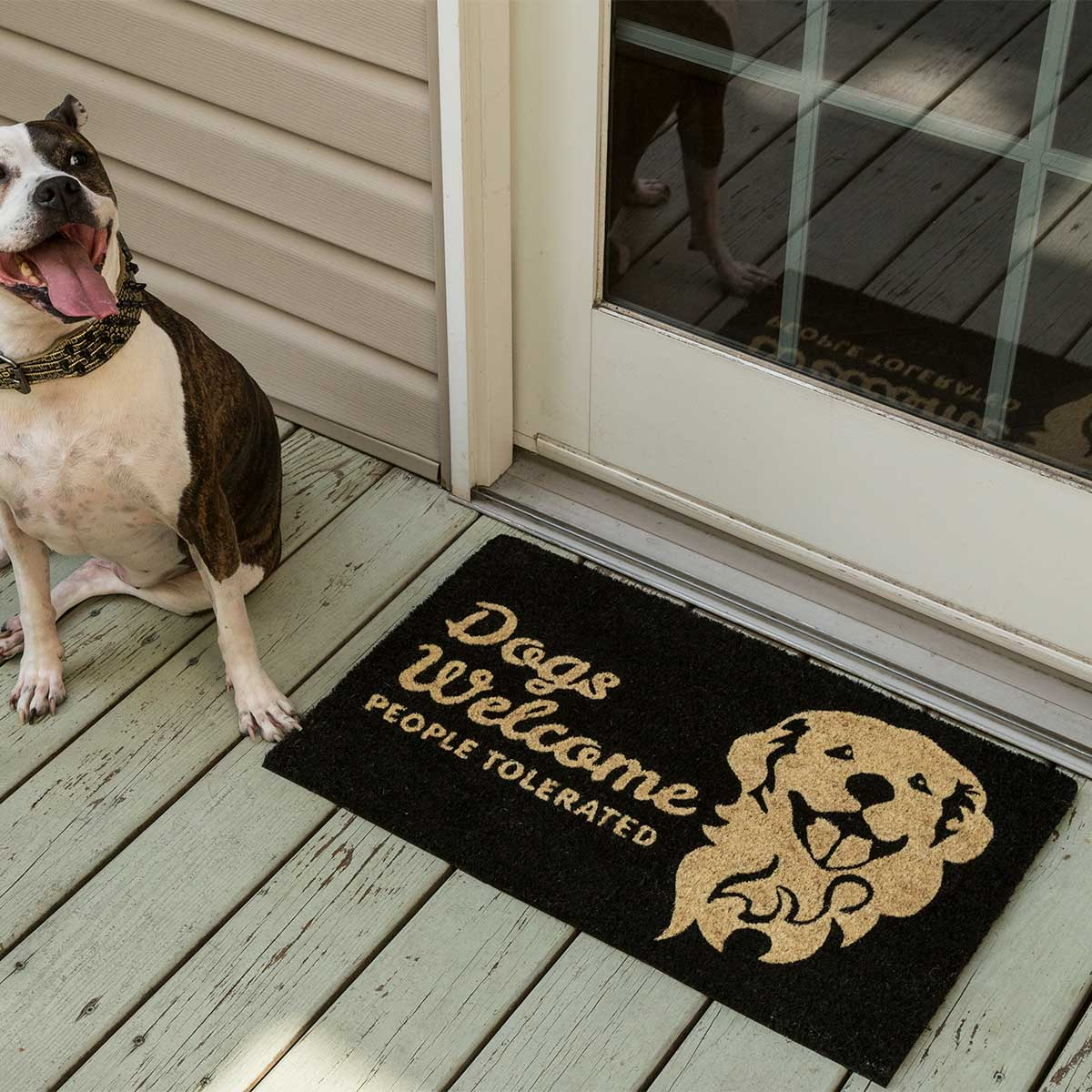 People Tolerated non Slip Coir Doormat