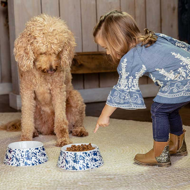 Country Living Stoneware Dog Bowl