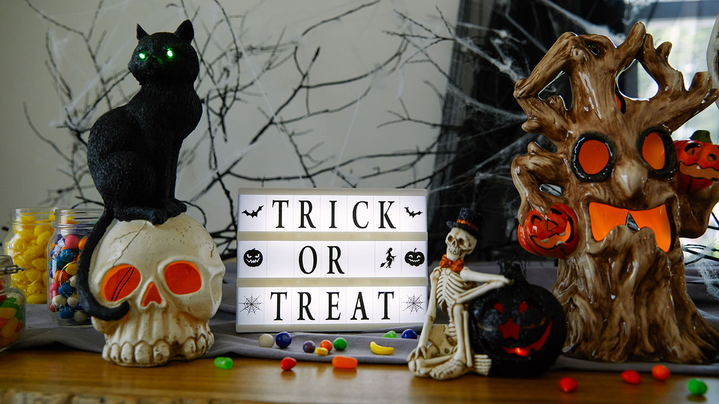 enjoy the frightening fun of halloween with our spectacularly spooky home decor costumes tableware books apparel and more