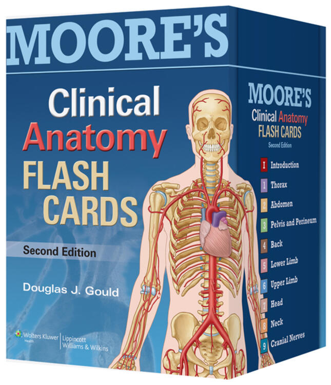 Moores Clinical Anatomy Flash Cards