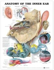 Anatomy of the Inner Ear Anatomical Chart