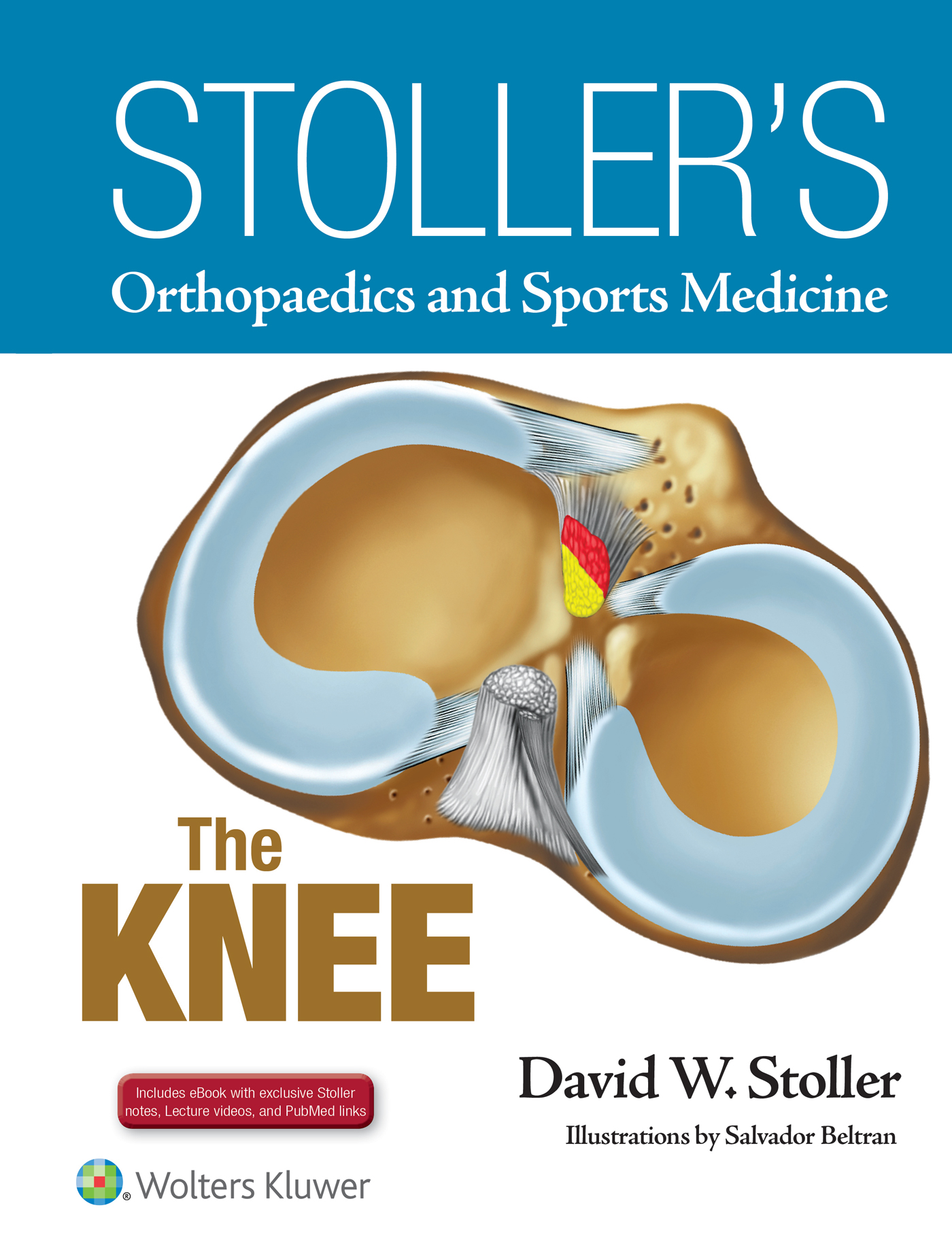 Book Stoller's Orthopaedics And Sports Medicine: The Knee