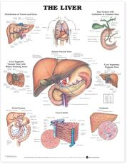 Liver Anatomical Chart