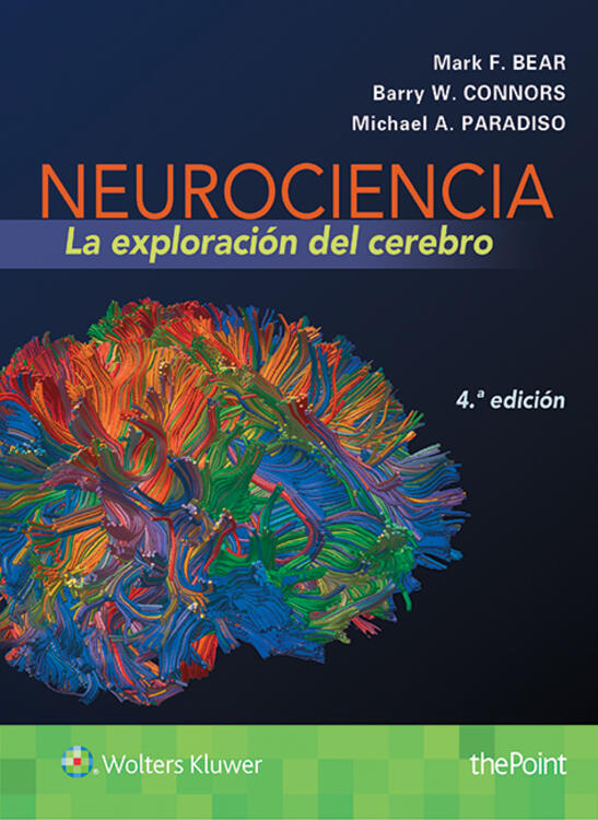 Neurociencia la exploracin del cerebro malvernweather Images