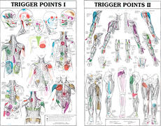 Two-Part Trigger Point Charts Laminated