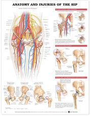 anatomical chart company wolters kluwer