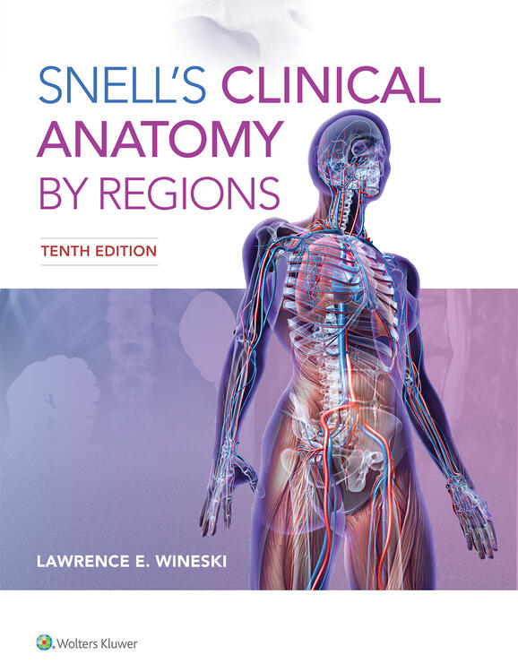 Snells Clinical Anatomy By Regions