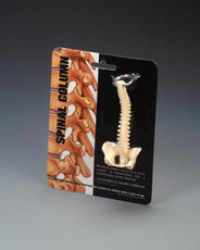 Spine Key Ring