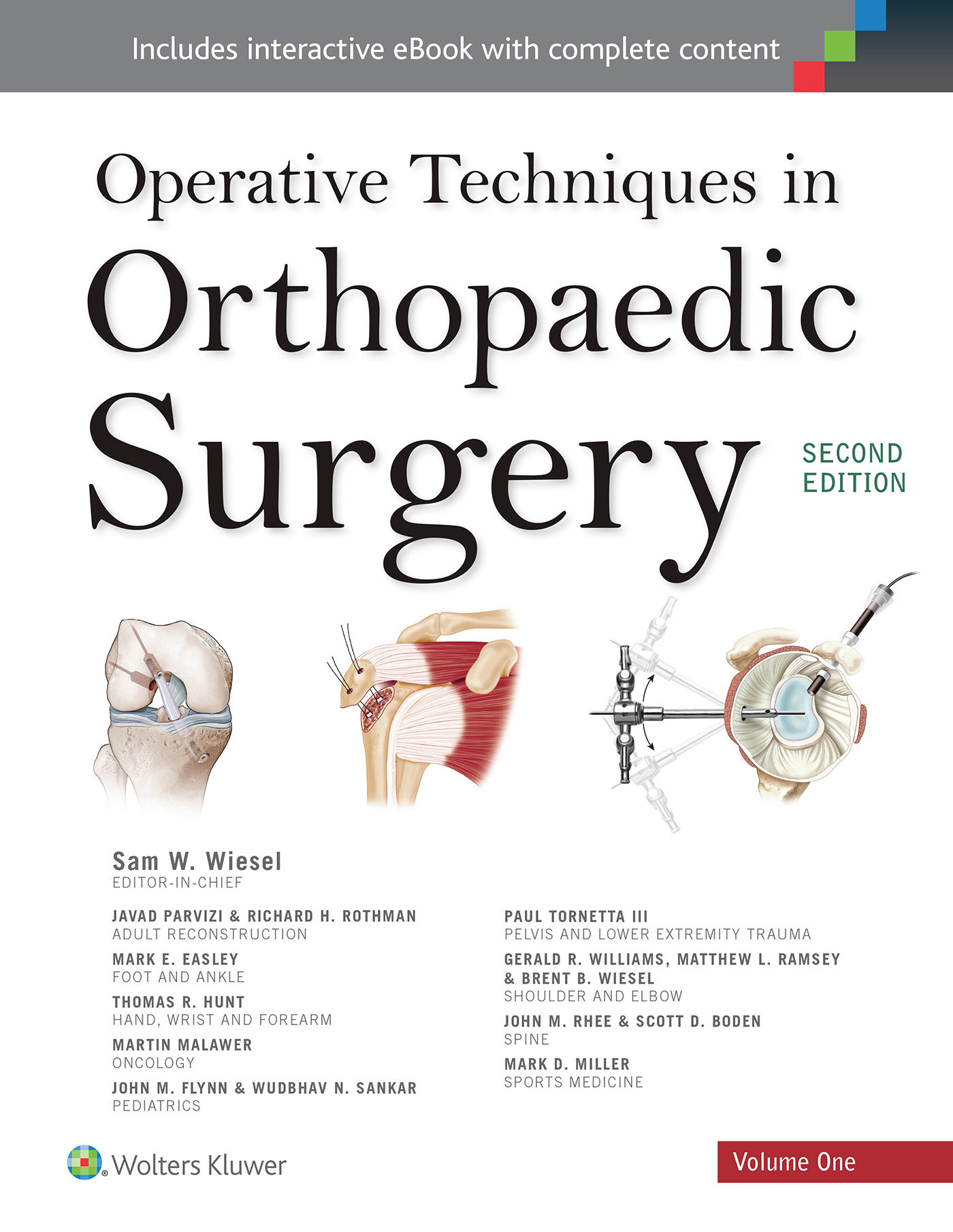 Operative Techniques in Orthopaedic Surgery (Four Volume .