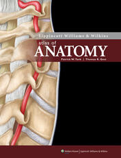 Lippincott Williams & Wilkins Atlas of Anatomy