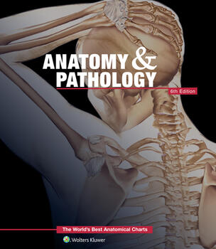 Anatomy pathologythe worlds best anatomical charts fandeluxe Image collections