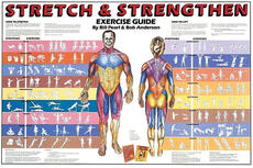 Stretch & Strengthen Chart