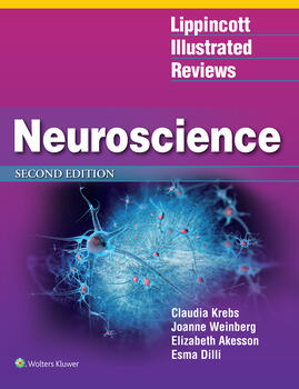 Lippincott Illustrated Reviews: Neuroscience