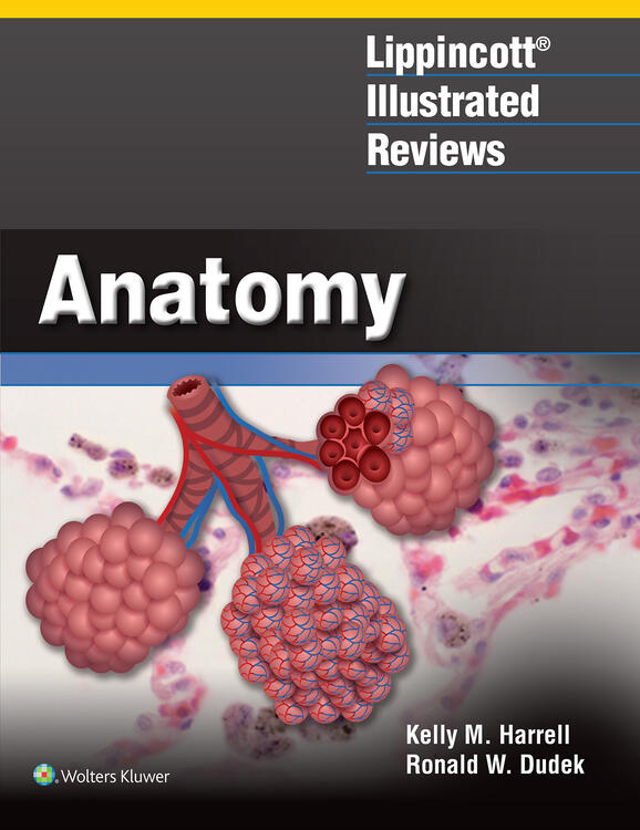 Lippincott® Illustrated Reviews: Anatomy