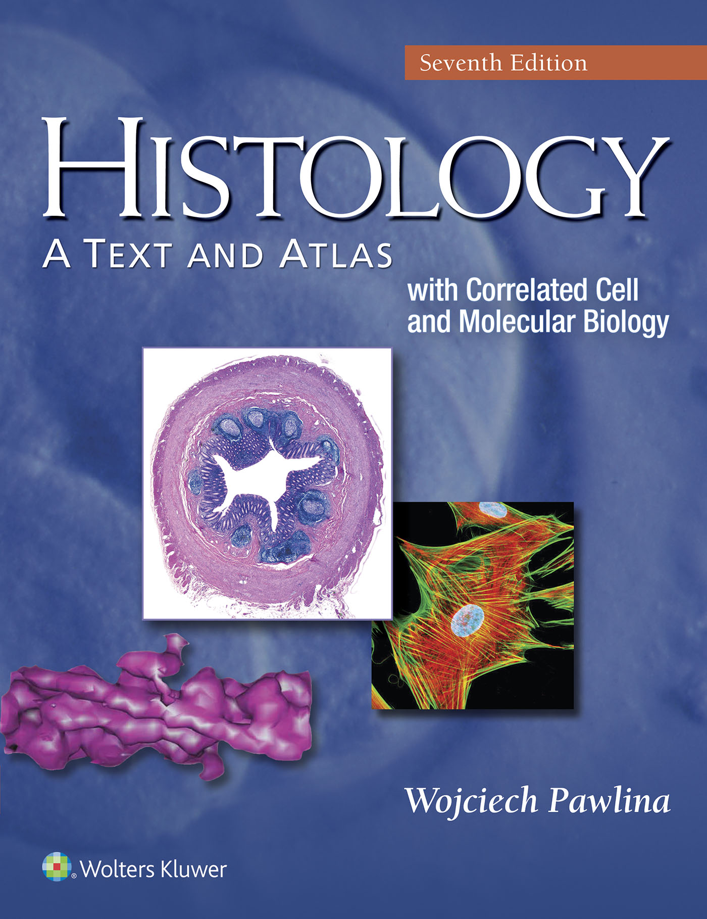 Histology a text and atlas fandeluxe