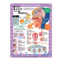 Blueprint for Health Your Taste and Smell Chart